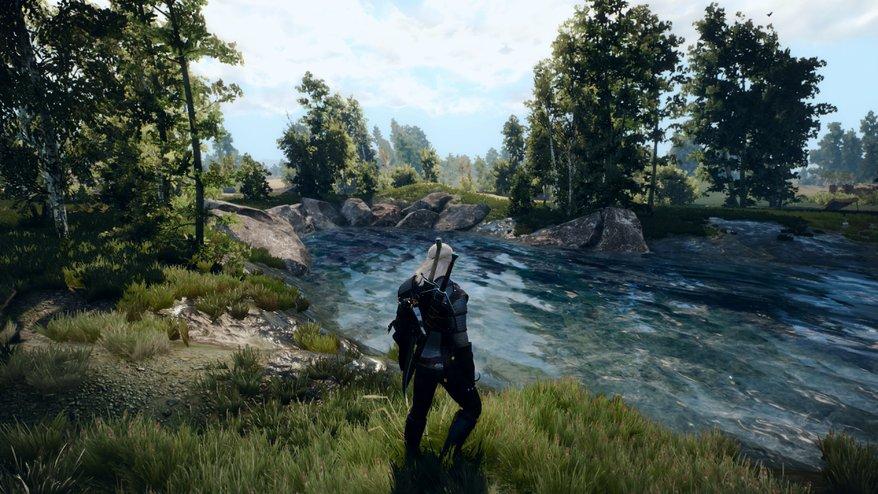 Моды Для The Witcher 3 Wild Hunt Скачать - фото 9