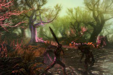 Обзор мода для Skyrim - Enderal: The Shards of Order