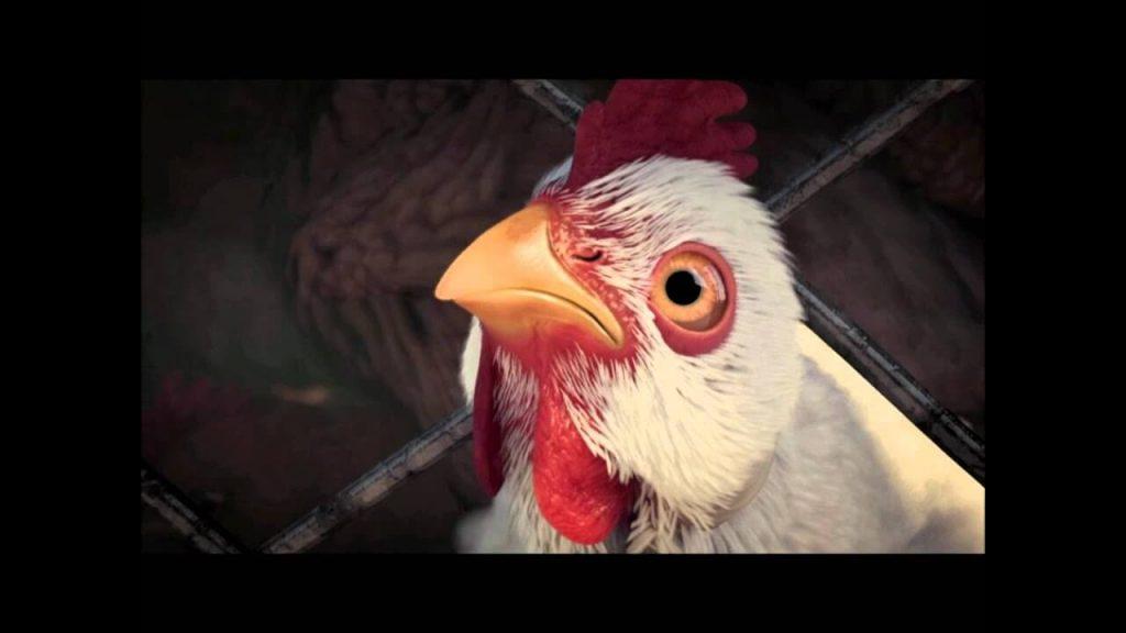 Квесты с курицами – Fable III