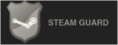 Третий недостаток — Steam Support