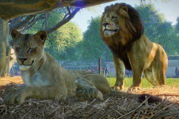 Вольеры в Planet Zoo: чистота, барьеры и благополучие животных