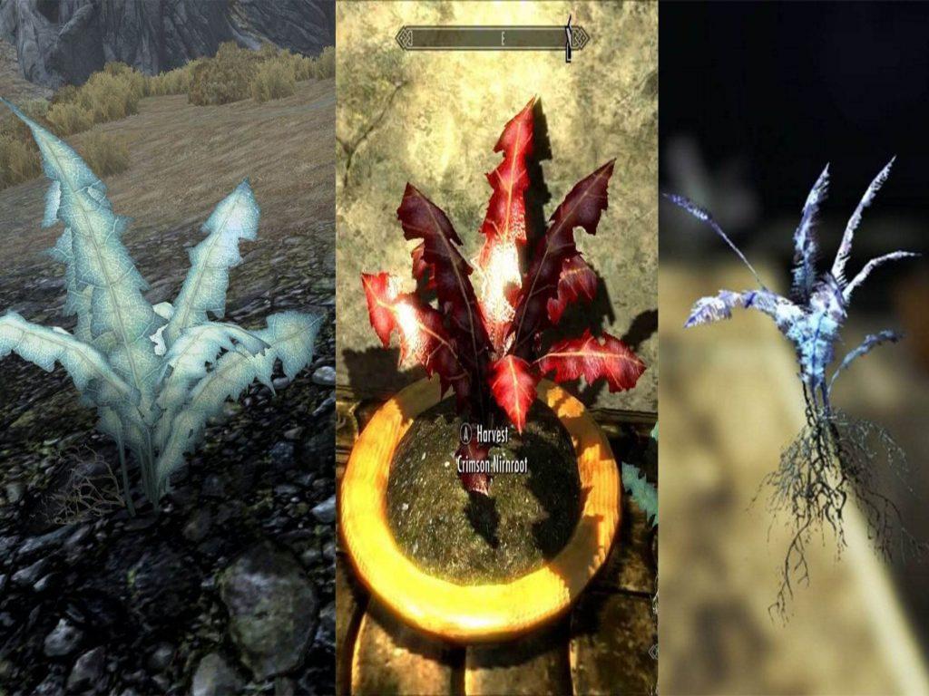 10. Серии Fallout и Elder Scrolls могут находиться в одной вселенной