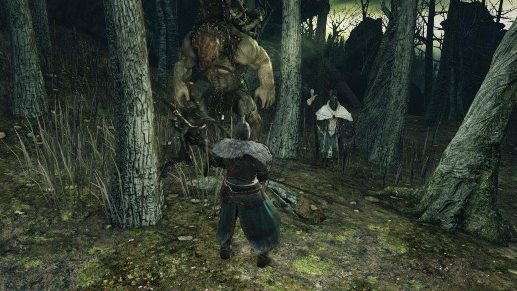 Мод-генератор случайного врага в Dark Soul 2