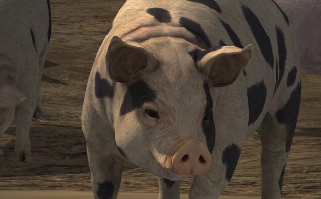 Ознакомительный трэйлер Farming Simulator 19