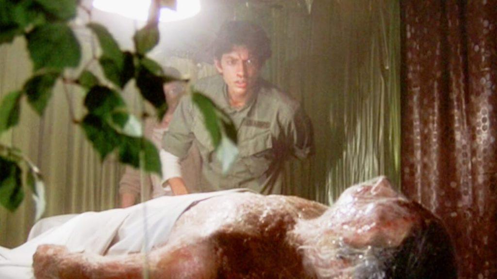 Вторжение похитителей тел(1978)