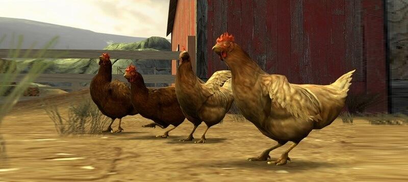 История куриц
