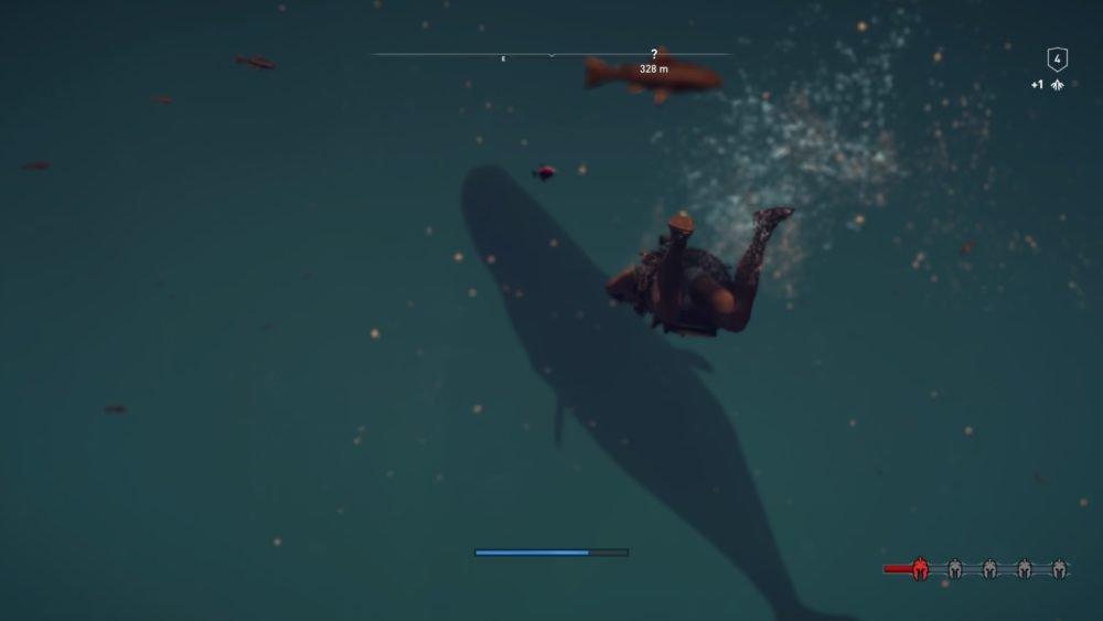 Поплавайте с китами