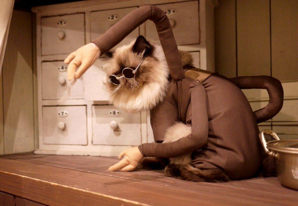 Кошачий косплей очень даже хорош