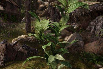 Мод Skyrim 3D Landscapes включает более 90 высококачественных 3D-моделей деревьев, цветов и растений
