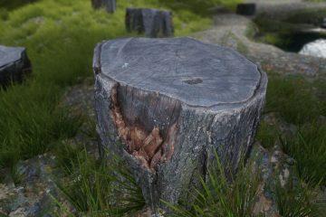 Благодаря 4K/2K текстурному моду для Skyrim в игре появляется фотограмметрия