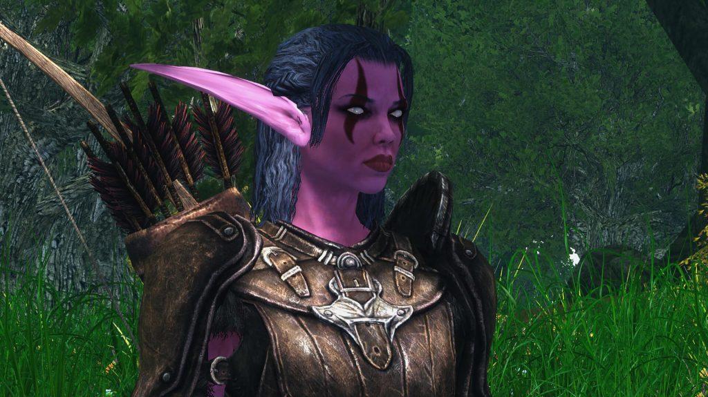 Моддер полностью воссоздает мир World of Warcraft в Skyrim