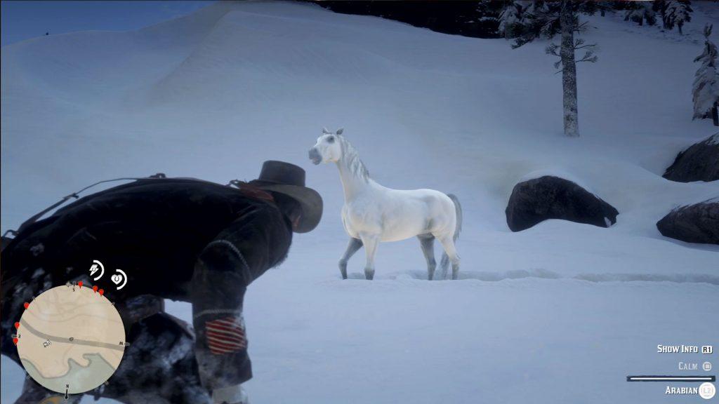 Как получить самую лучшую лошадь в Red Dead Redemption 2
