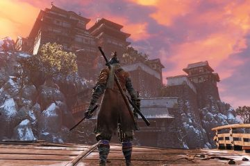 Sekiro - вышла первая модификация для игры