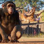 Первый игровой процесс из игры Planet Zoo