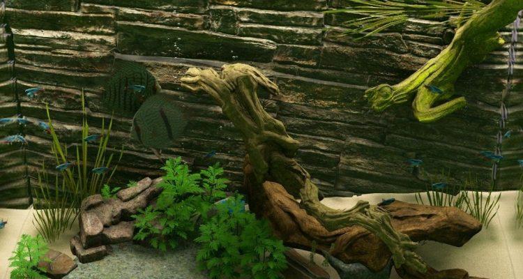 Biotope - симулятор аквариума скоро появится в Steam
