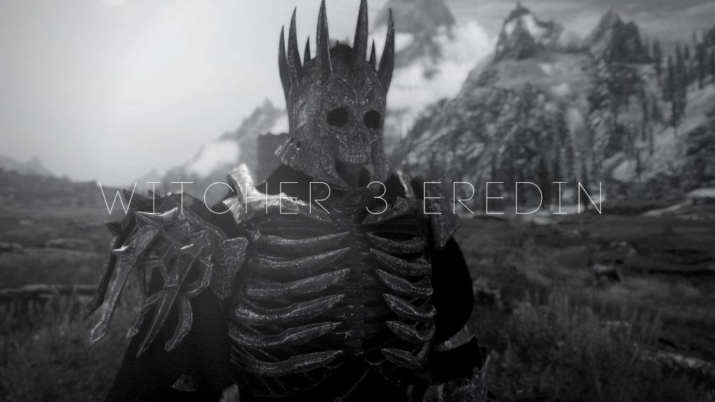 Броня Эридина из Witcher 3