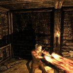 Мод для Skyrim добавляет монстров, оружие, знаки и многое другое из вселенной Ведьмака