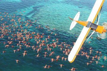 Microsoft Flight Simulator - красивый трейлер с X019