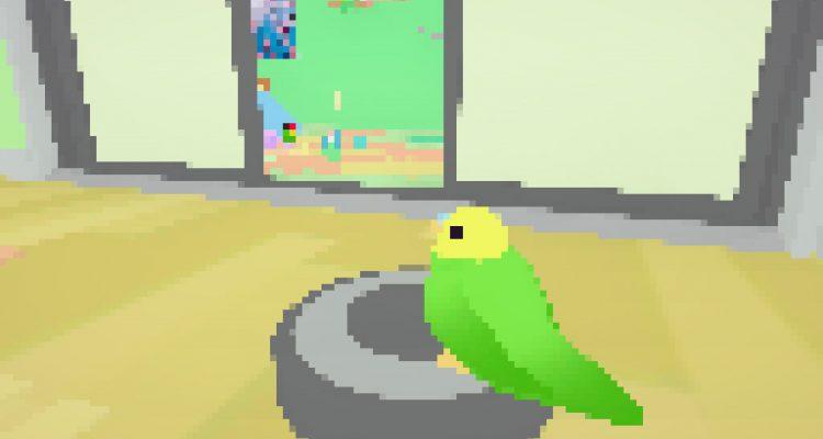 Toripon – когда птиц столько, что не перефотографировать