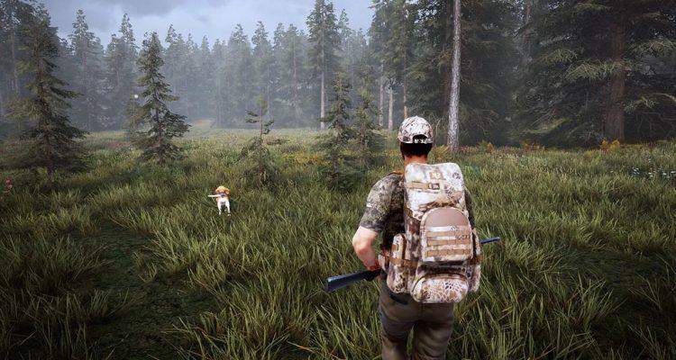 Hunting Simulator 2 - объявлена дата выхода