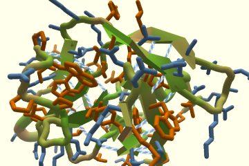 Эта игра может помочь создать вакцину от коронавируса