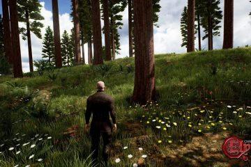 Прекращена разработка MMORPG - Chronicles of Elyria