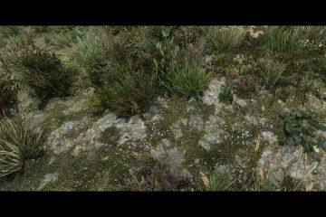 Пак 8K HD текстур для Skyrim SE добавляет ландшафтные текстуры, созданные с помощью 3D-сканов