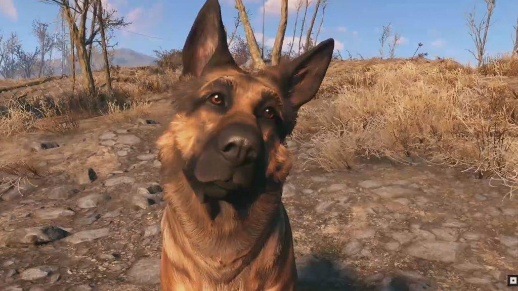 В Fallout 76 могут появиться питомцы