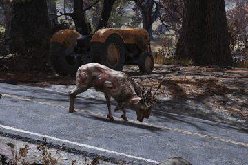 В Fallout 76 олень привел игроков к сокровищу