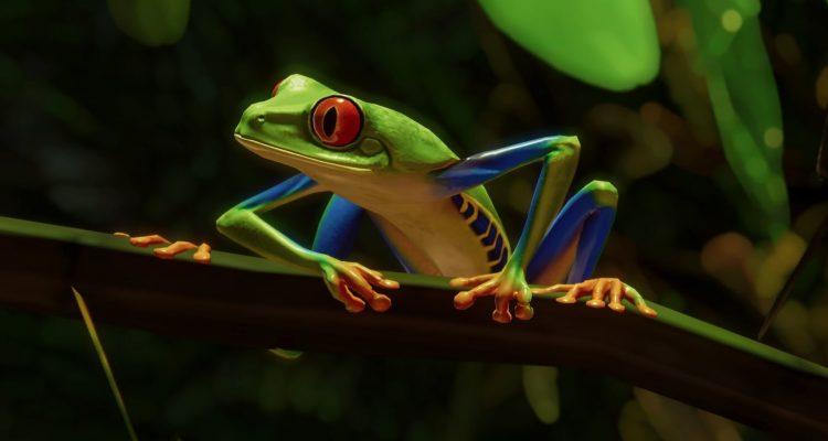 Вышедший DLC Южная Америка для Planet Zoo включает в себя целых пять новых животных