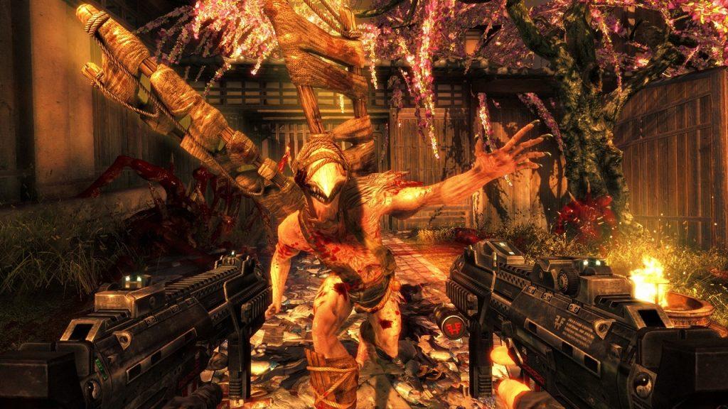 Фехтование Shadow Warrior