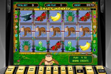Обзор и описание игрового автомата Crazy Monkey (Безумная обезьяна)