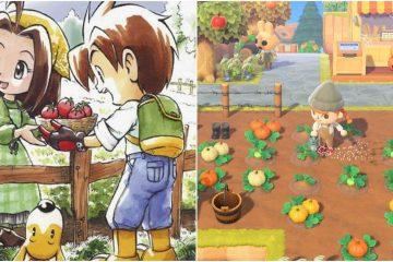 11 лучших игр с сельской эстетикой